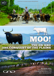 Poster of The Ox and the conquest of the plains