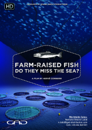 Poster of Farm-raised fish, do they miss the sea?