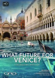 Affiche de Quel avenir pour Venise?