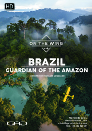Poster of Guardian of the amazon (Brazil)