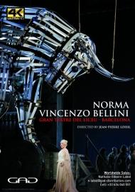 Affiche de Norma de Vincenzo Bellini - Gran teatre del Liceu