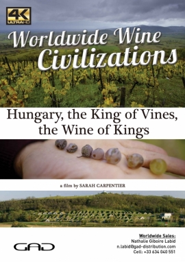 Poster of The king of vines, the wine of kings (Hungary)