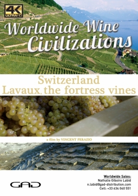 Poster of Lavaux, the fortress vines (Switzerland)