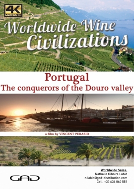 Poster of The conquerors of the Douro valley (Portugal)