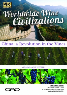 Poster of A revolution in the vines (Chine)