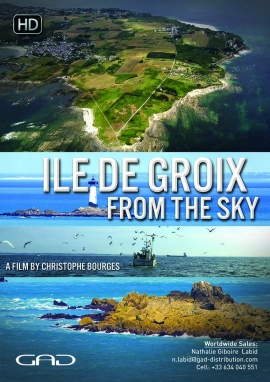 Poster of Ile de Groix from the sky