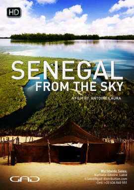 Poster of Senegal from the sky