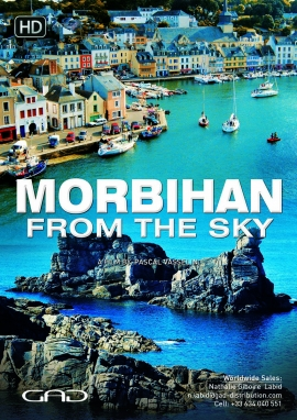 Poster of Morbihan from the sky