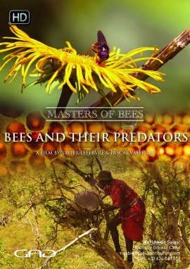 Poster of Bees and their predators - Kenya/Turkey