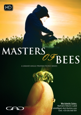 Poster of Masters of bees - short version