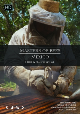 Poster of The bee of the Mayas (Mexico)