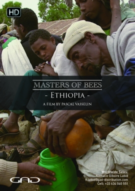 Poster of Bees in service of faith (Ethiopia)
