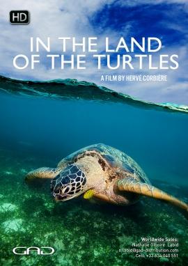 Affiche de Au pays des tortues