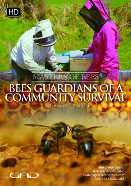 Poster of Bees guardians of a community survival - New Zeeland / Cameroon