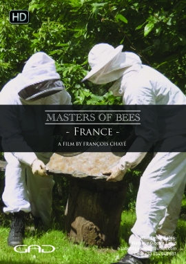 Poster of The shepherd of the bees (France)