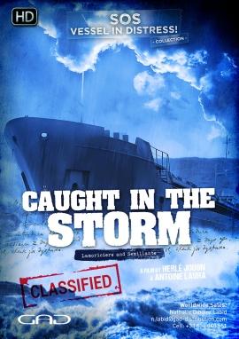 Affiche de Pris dans la tempête