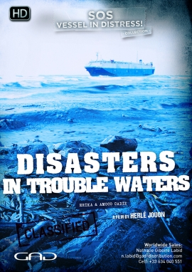 Poster of Disasters in trouble waters