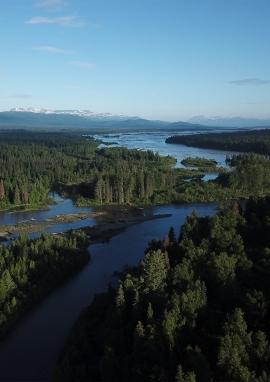 Affiche de Alaska, les saumons king de la Tal
