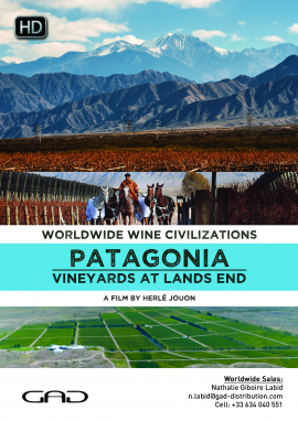 Poster of Vineyards at lands end (Patagonia/Argentina)