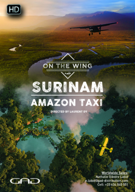 Poster of Amazon Taxi (Surinam)