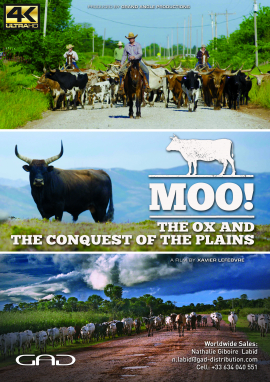 Poster of The Ox and the conquest of the plains (Turkey, Portugal, United States, France)