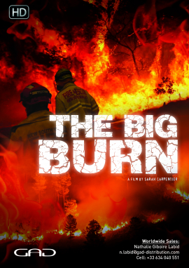 Poster of The Big Burn