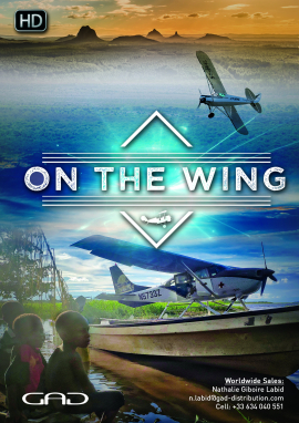 Poster of On the wing