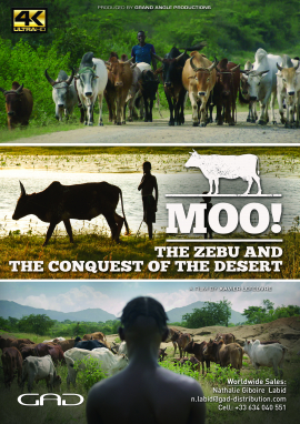 Poster of The zebu and the conquest of the desert (India, Brazil, Switzerland, Ethiopia)