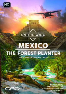 Poster of The forest planter (Mexico)