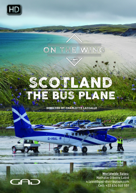 Poster of The bus plane (Scotland)