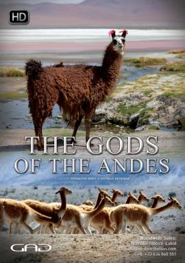 Affiche de Les Dieux des Andes
