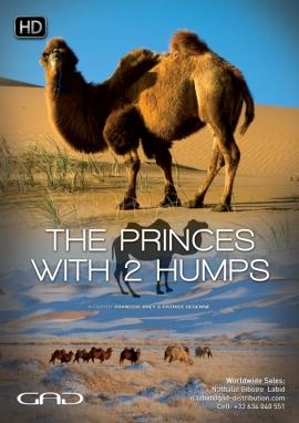 Affiche de Les Princes à deux bosses