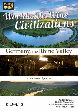 Poster of The Rhine valley (Germany)