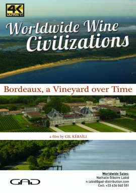 Poster of Bordeaux, a vineyard over time (France)