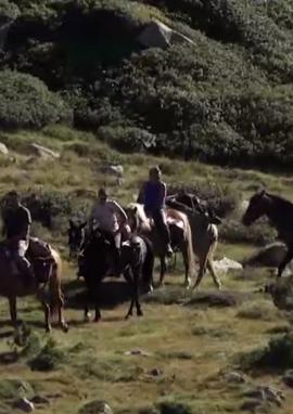 Affiche de Chasses à cheval dans les montagnes catalanes